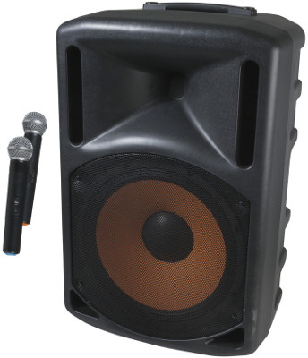 PA System with Twin Wireless Microphones