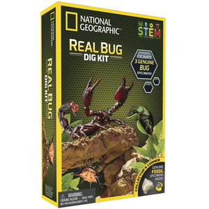 Photo of a bug excavation science kit.